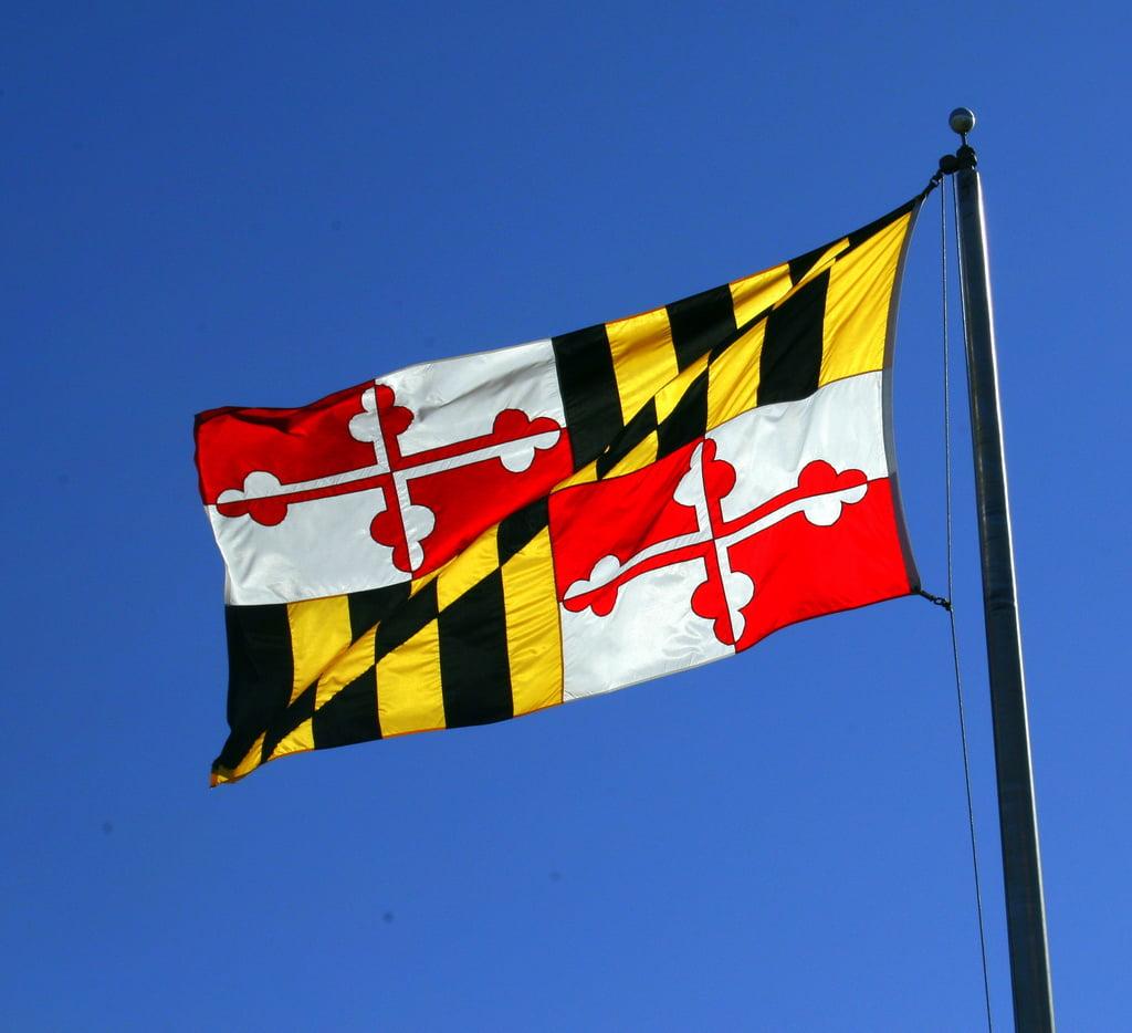 Law Offices of Douglas C  Lauenstein: Baltimore Law Firm